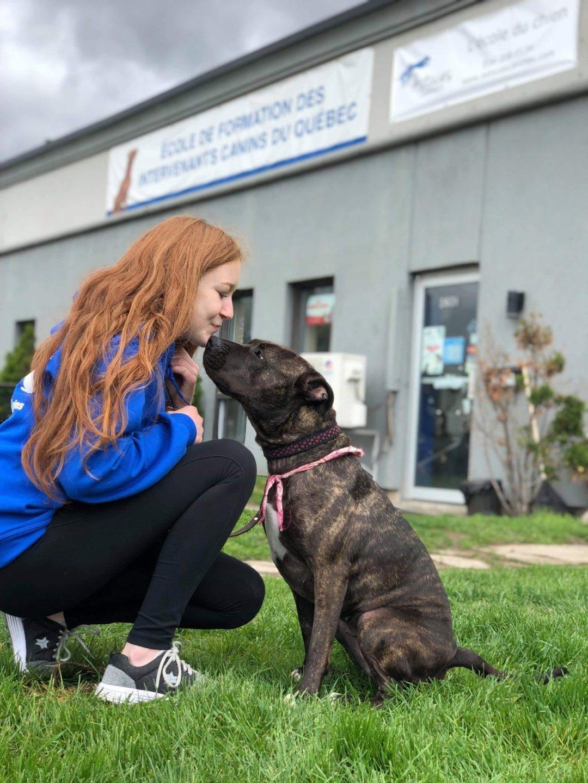 Étudiante qui embrasse un chien de type pitbull