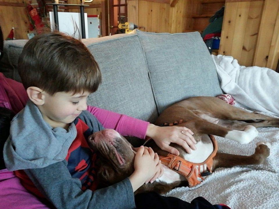 Enfant avec chien coucher près de lui