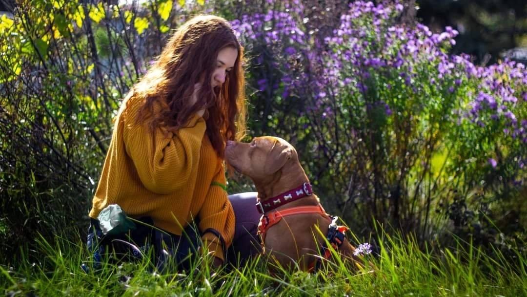 Étudiante devant des fleurs avec son chien de type pitbull
